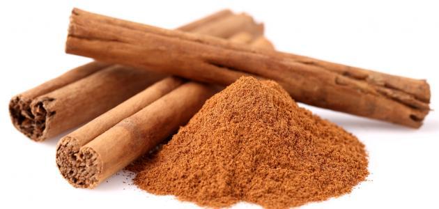 عرف الإنسان فوائد القرفة cinnamon من القدم، وقد استخدمتها كثير من الشعوب  للعلاج من بعض الأمراض، فما هي فوائد القرفة؟ وما هي استعمالاتها؟