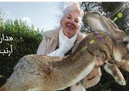 داريوس« أكبر أرنب في العالم