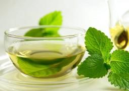 تناول الشاي بالنعناع للتخلص من الوزن الزائد ودهون الجسم
