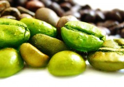 القهوة الخضراء الحل الأفضل لإنقاص الوزن وحرق الدهون