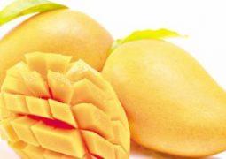 """""""ديلى ميل"""": المانجو يساعد على مقاومة السمنة ومرض السكر"""