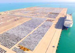 موانئ أبوظبي تدخل مشروع التحول الرقمي إلى جميع خدمات السفن