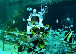 منتجع ارض الاساطير في انطاليا يستقبل اكثر من 5 الاف زائر يوميا