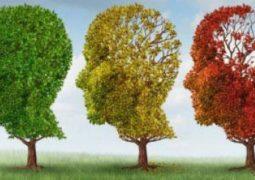 6 نصائح علمية لتحسين الذاكرة