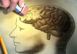 مشاهدة صور الذكريات الجميلة تحسن من أداء دماغ الإنسان