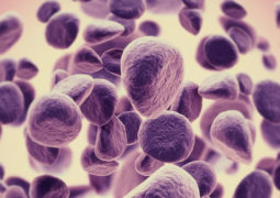 خلايا معدلة تهاجم السرطان وتقضي عليه