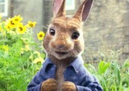 Peter Rabbit يواصل النجاح فى شباك التذاكر بإيرادات 54 مليون دولار