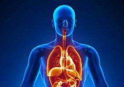 اكتشاف مادة صادمة في جسم الإنسان!